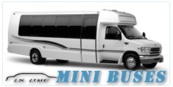 Mini Bus rental in Colorado Springs, CO