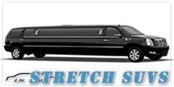 Colorado Springs wedding limo