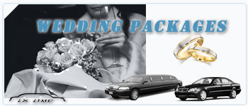Colorado Springs Wedding Limos